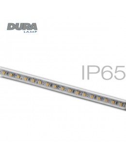 Striscia LED 24V 5 mt. IP65 6000K